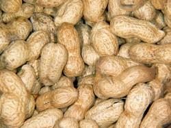 Erdnüsse und erdnusshaltige Speisen können starke allergische Reaktionen auslösen. © LUPO / pixelio.de.